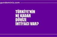 İktisatçı yazar  Kozanoğlu: Türkiye'nin ihtiyacı olan para…