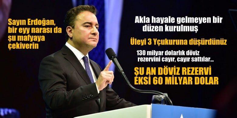 Babacan: Sayın Erdoğan ses çıkarmayacak mısınız?