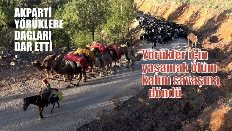 ODATV Yazarı Yavuz: AKParti,  Yörüklere dağları dar etti