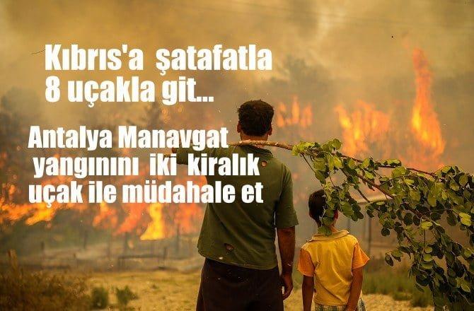 Kıbrıs'a şatavatla 8 uçakla git, Manavgat yangınını iki kiralık uçakla söndürmeye çalış