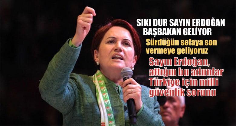 Meral AKŞENER; Sıkı dur  sayın Erdoğan, başbakan geliyor